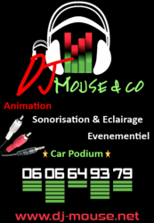 DJ Mouse & Co, animation, sonorisation & éclairage